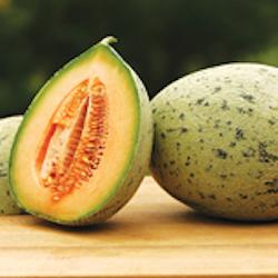 Crane Melon-250.jpeg