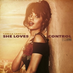 she loves control remix artwork.jpg