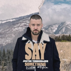 say something remix artwork.jpg