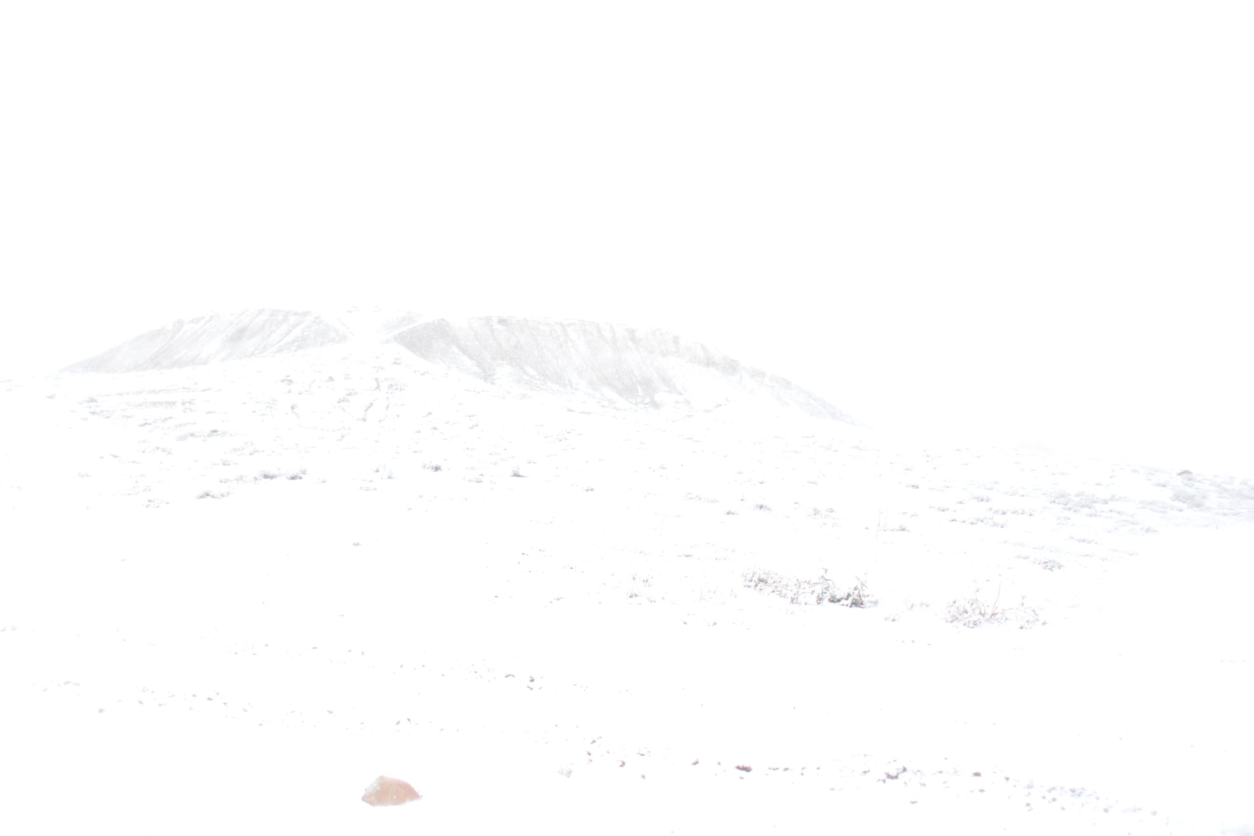 High elevation blizzard, Utah.