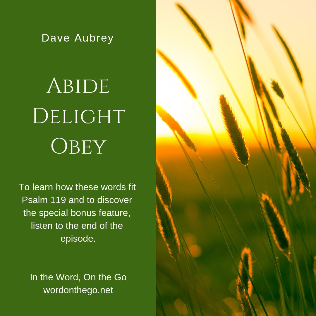 Aubrey Ps 119 11.jpg