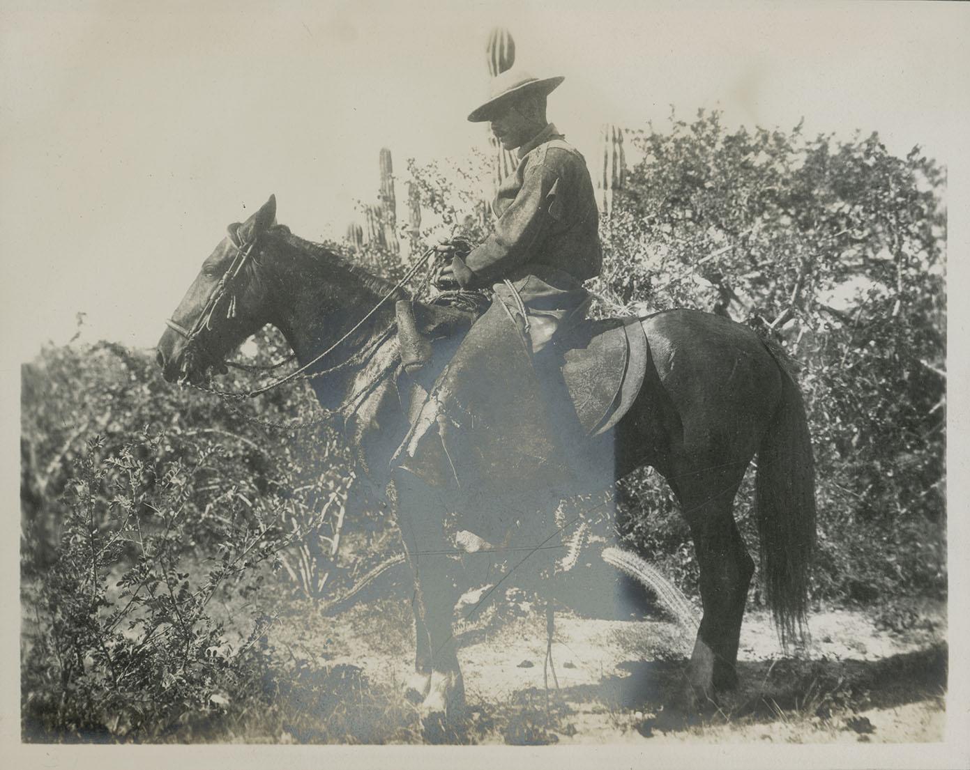 cowboy, el cajon.jpg