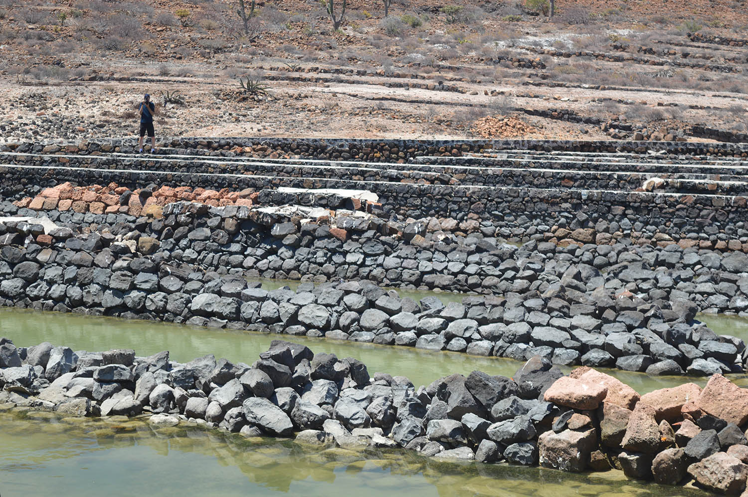 Pearl oyster beds on Isla Espiritu Santo in surprisingly good shape for being over 100 years old.