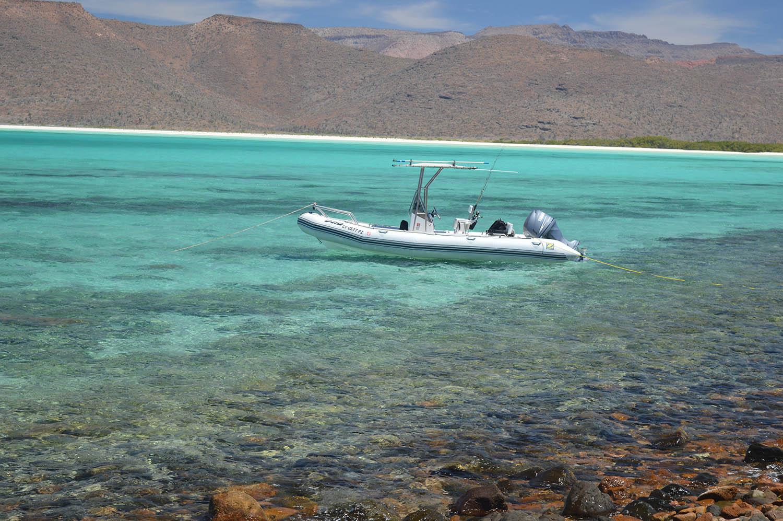 A true Baja paradise... despite the harsh and unforgiving desert beyond.