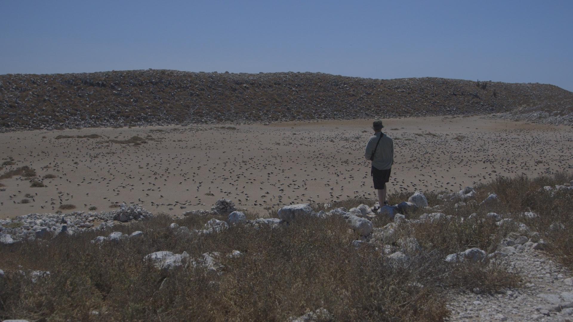Greg Overlooking Dry Valley.jpg