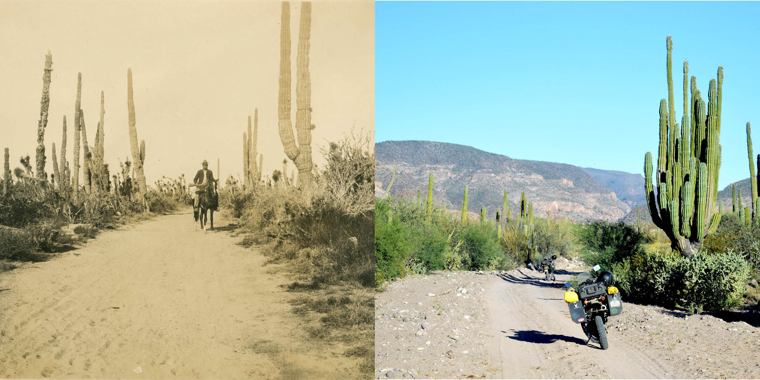 comparison 1906_2017.jpg