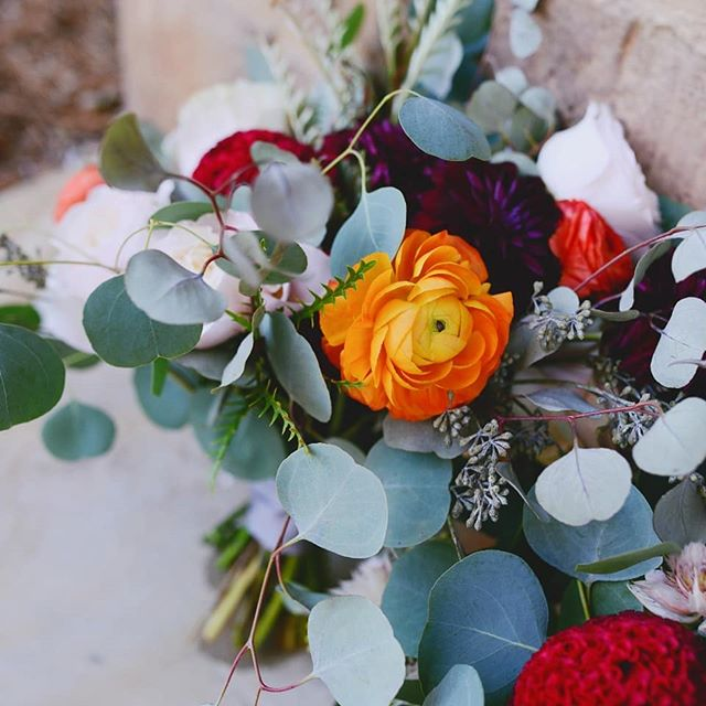 Pretty flowers make the world go round!!! ⠀⠀⠀⠀⠀⠀⠀⠀⠀ 📸@indigocharlotte