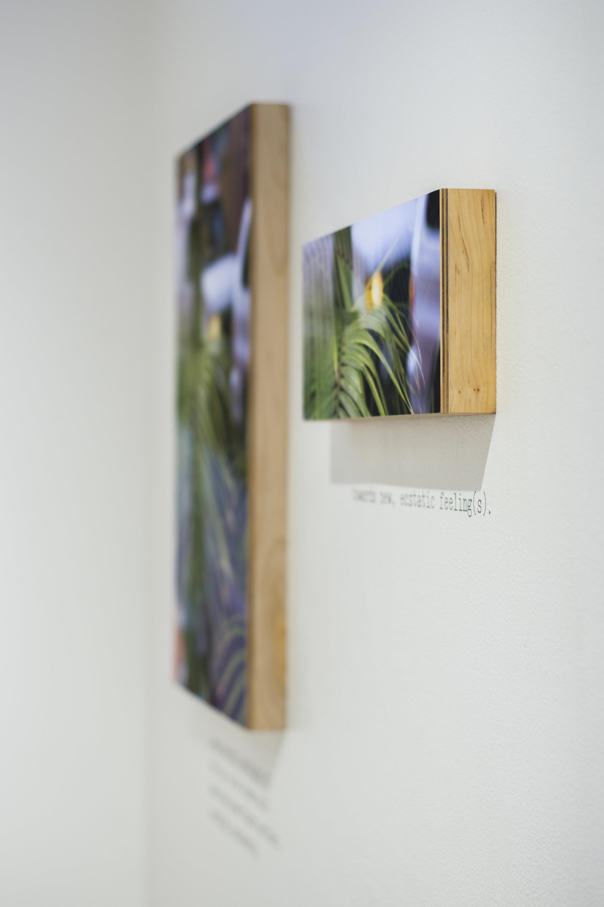 imageoptimism_exhibition2.jpg