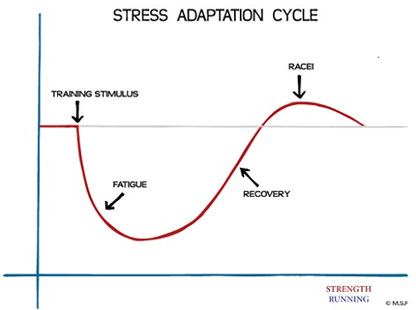 Figure 1. Graph showing the basic pattern of stress, recovery and adaptation. Source:  www.strengthrunning.com