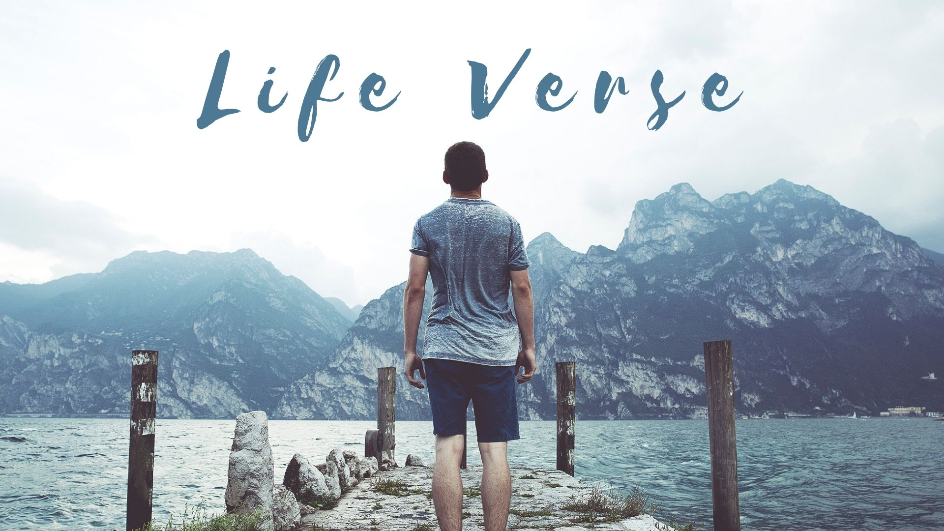 LIFE VERSE - Series Image.jpg