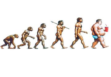 evolution1.png