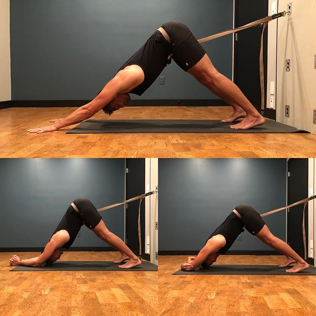 3 variations of Downdog with Kurunta Wall. #downdog #dolphinpose #yogawall