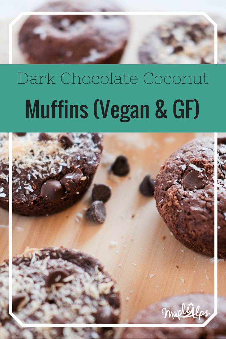 Dark Chocolate Coconut Muffins (Vegan & Gluten Free!) Super easy and really delicious - especially warm!