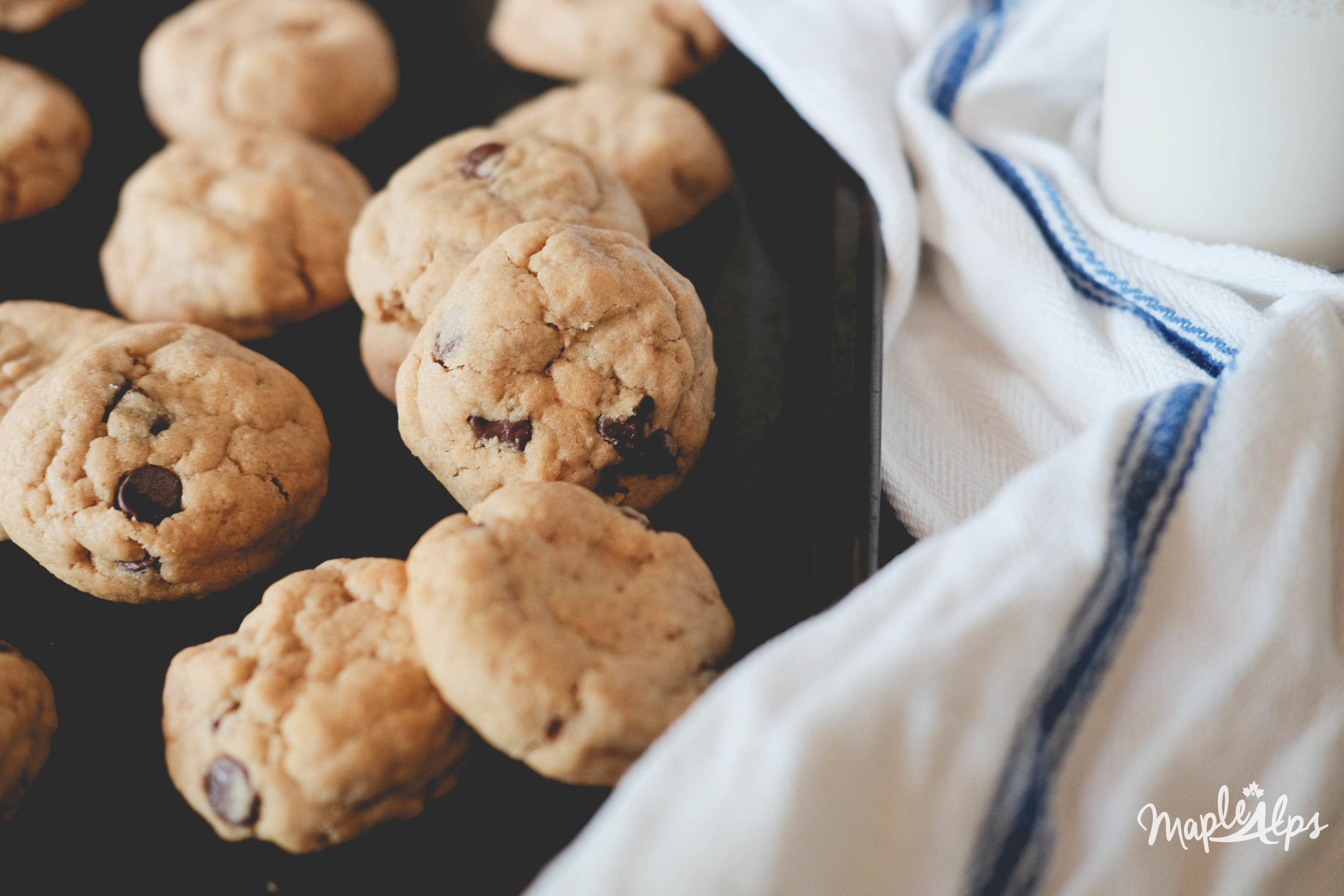 Peanut Butter Chocolate Chip Cookies (Vegan and Gluten Free) | www.maplealps.com