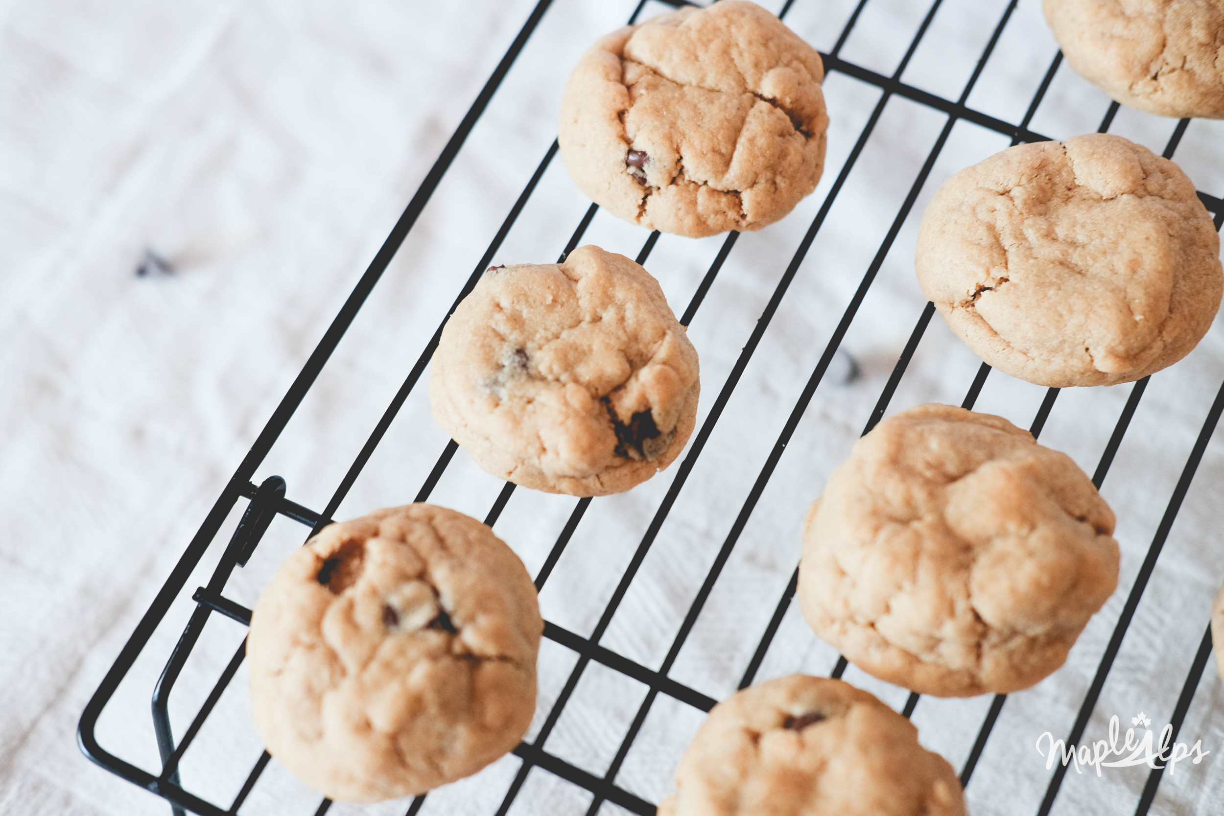 Peanut Butter Chocolate Chip Cookes (Vegan & Gluten Free) | www.maplealps.com