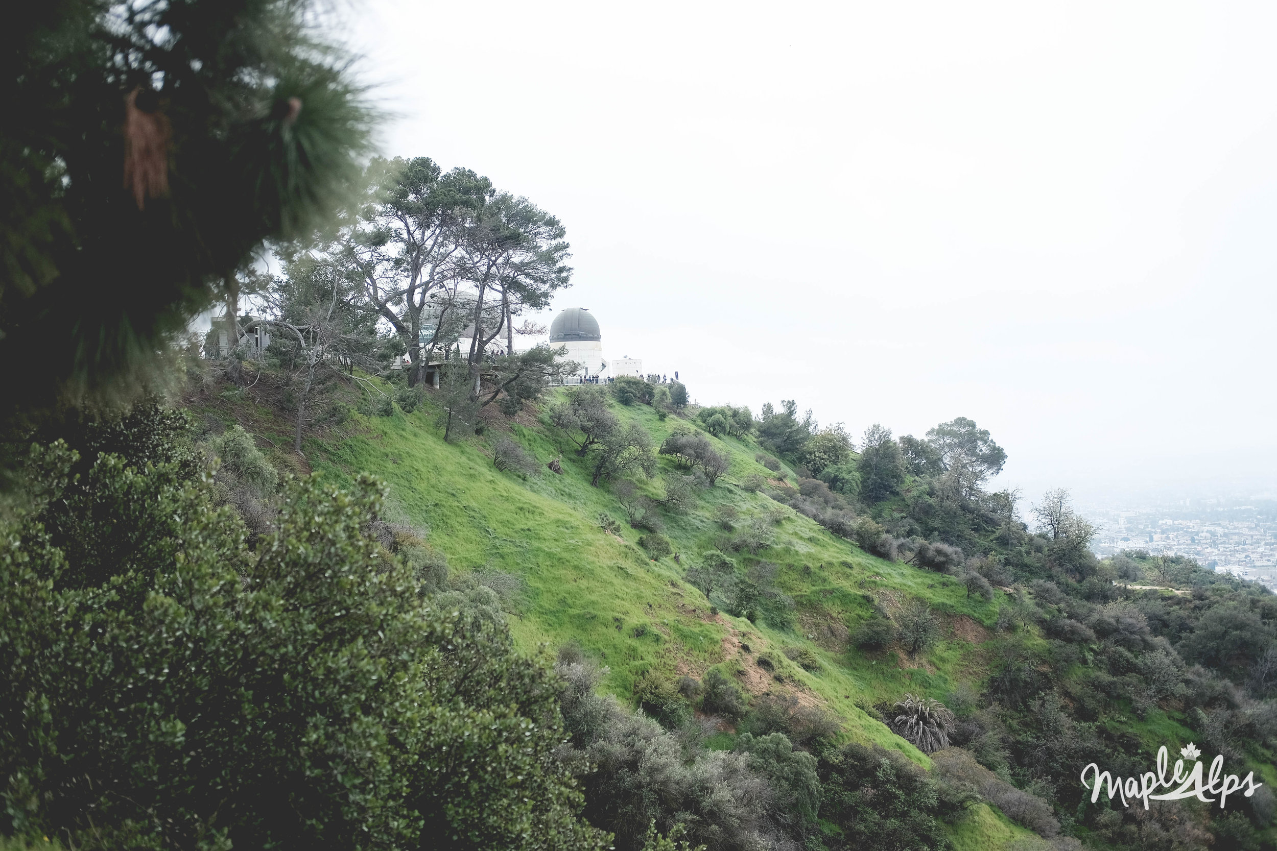 A weekend in LA | www.maplealps.com
