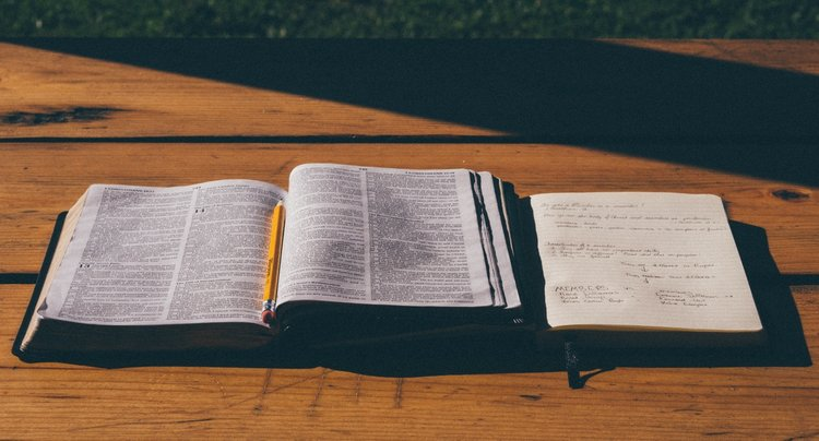 strive for deeper immersion into the Word of God.