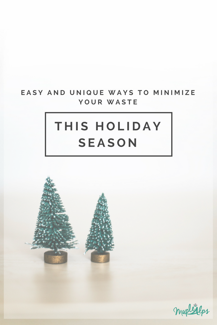 Unique Ways To Minimize Your Waste This Holiday Season | www.maplealps.com