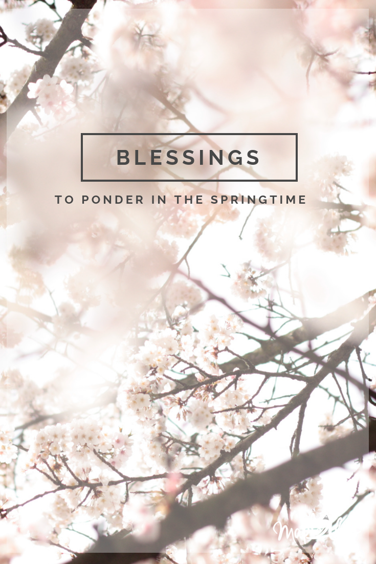 Blessings to Ponder in the Springtime | www.maplealps.com