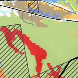 LandCover-thumb.jpg