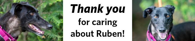 Ruben-Thank-You.png