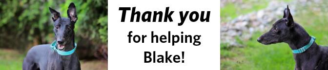 Blake-TY-banner.png