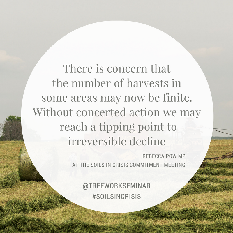 Soils in Crisis Quote 11 Rebecca Pow.png