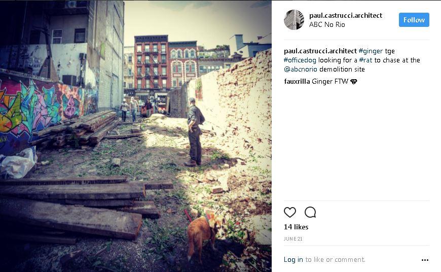 instagram 2 abcnorio.JPG
