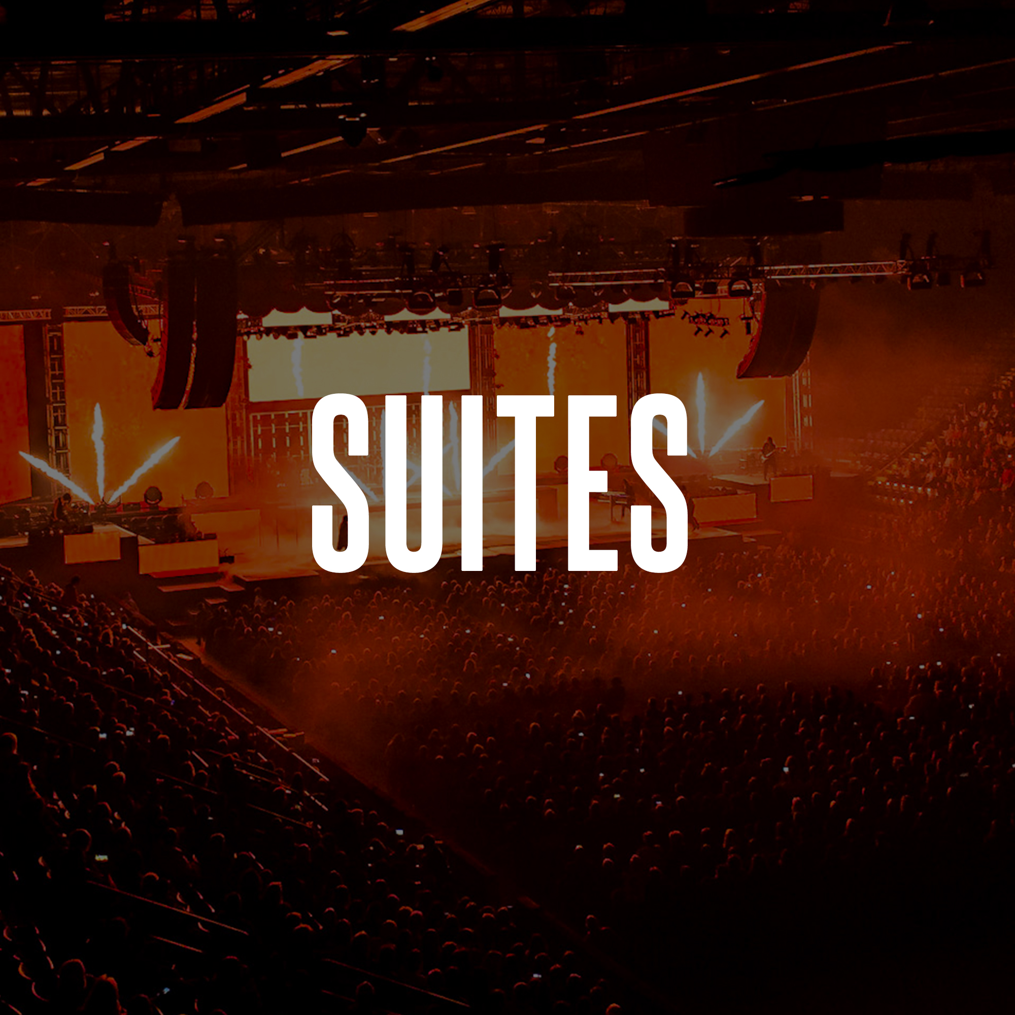 suites2.jpg