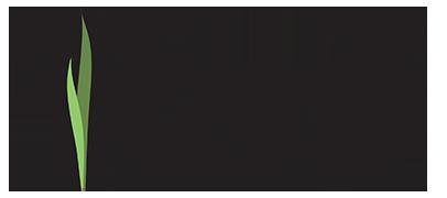 turf-logo-2016-406x180.png
