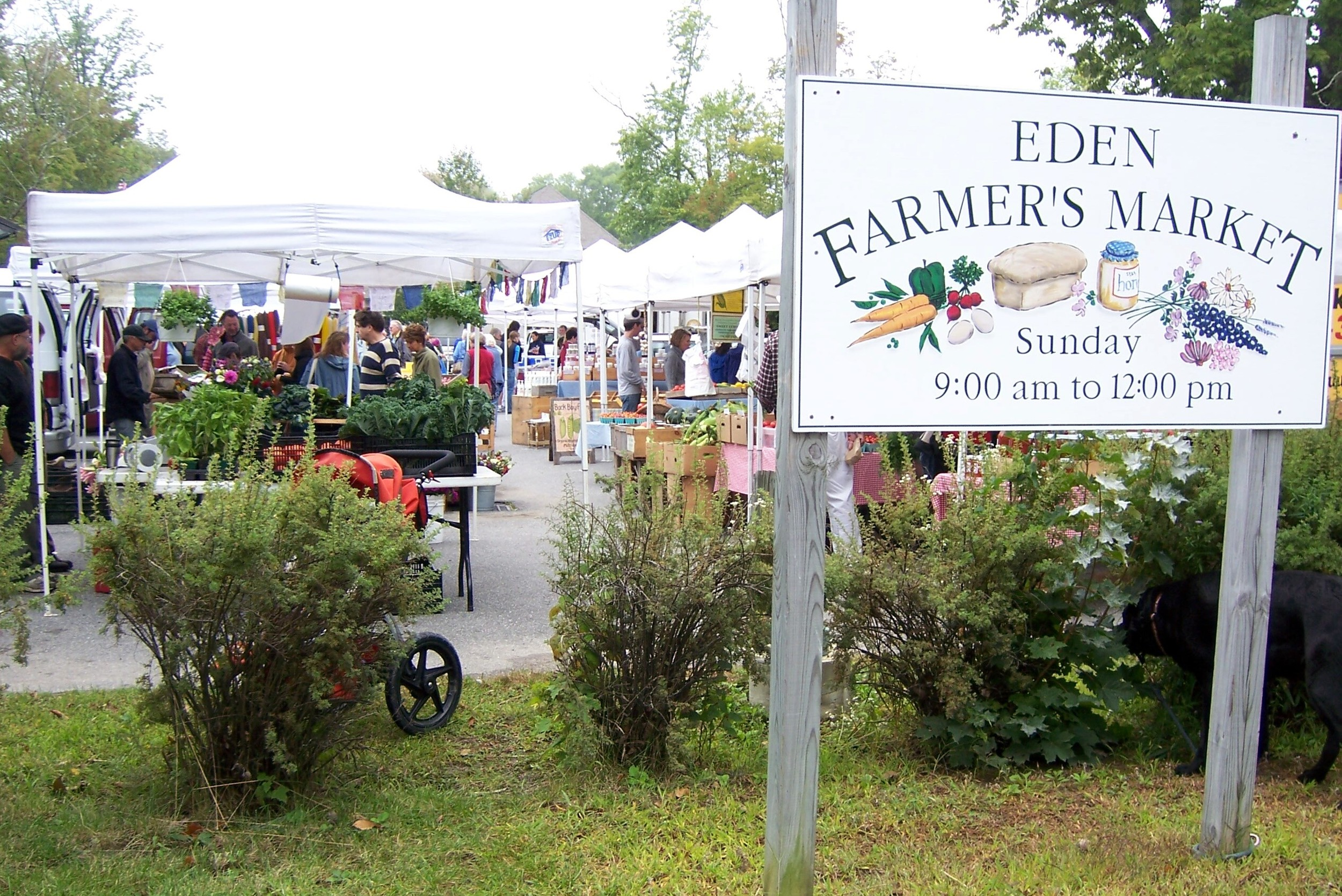 Just minutes away from the island's largest farmers market.