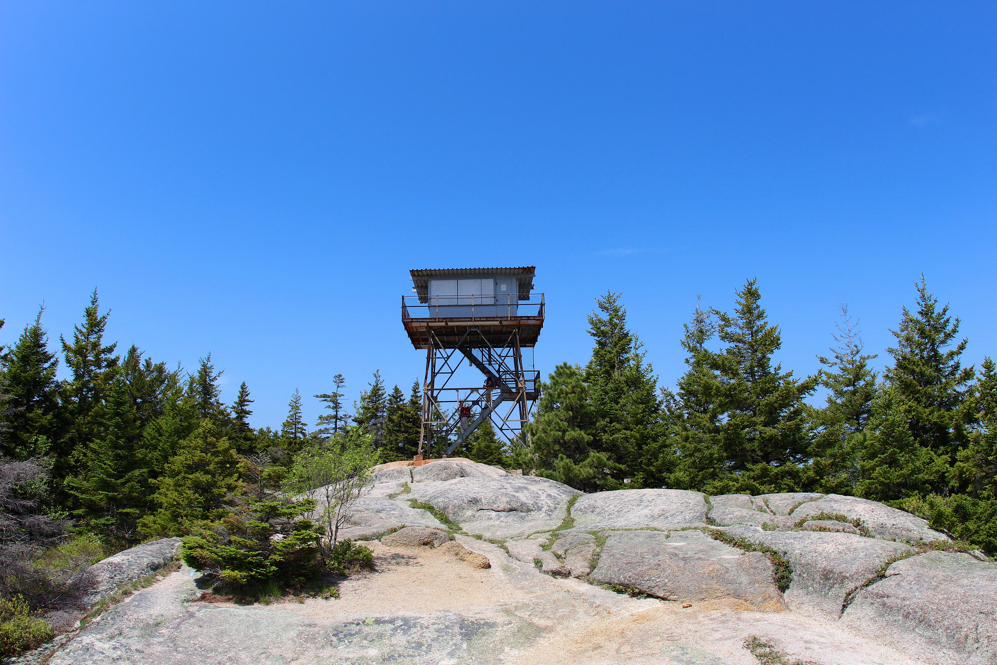 The fire tower that sits on the summit of Beech Mountain, just 3 miles away.