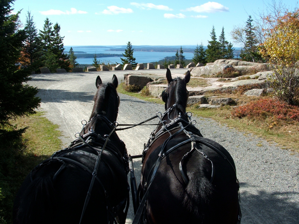 A horse-drawn carriage brings visitors to the summit of Day Mountain in Acadia.