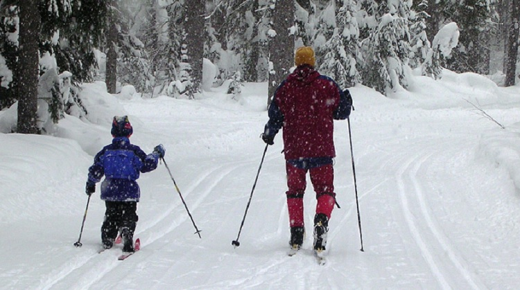 Cross-country skiing for the whole family