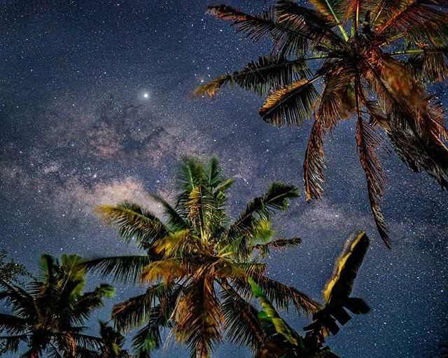 Dark skies in Gili Air, Bali ✨✨ my jaw dropped when I saw this on my camera.. it was the clearest shot of the milky way I've ever captured ohhh the joy!!! 🌴 Taken with my favorite combo: Sony A6500 + Sigma 16mm 1.4 . . . #wonderfulindonesia #sonyalpha6500 #giliislands #sigmalens #astrophotography #astrophoto #wonderfulearth #exploremore #traveldeeper #travelstoke #passionpassport #getoutstayout #mytinyatlas #travelgram #roamtheplanet #travelanddestinations #serialtraveler #ourplanetdaily #wonderful_location #neverstopexploring #timeoutsociety #igtravel #thisweekoninstagram #wanderlust #jetsettering #guardiantravelsnaps #nakedplanet #agameoftones #traveloffpath #explorebali