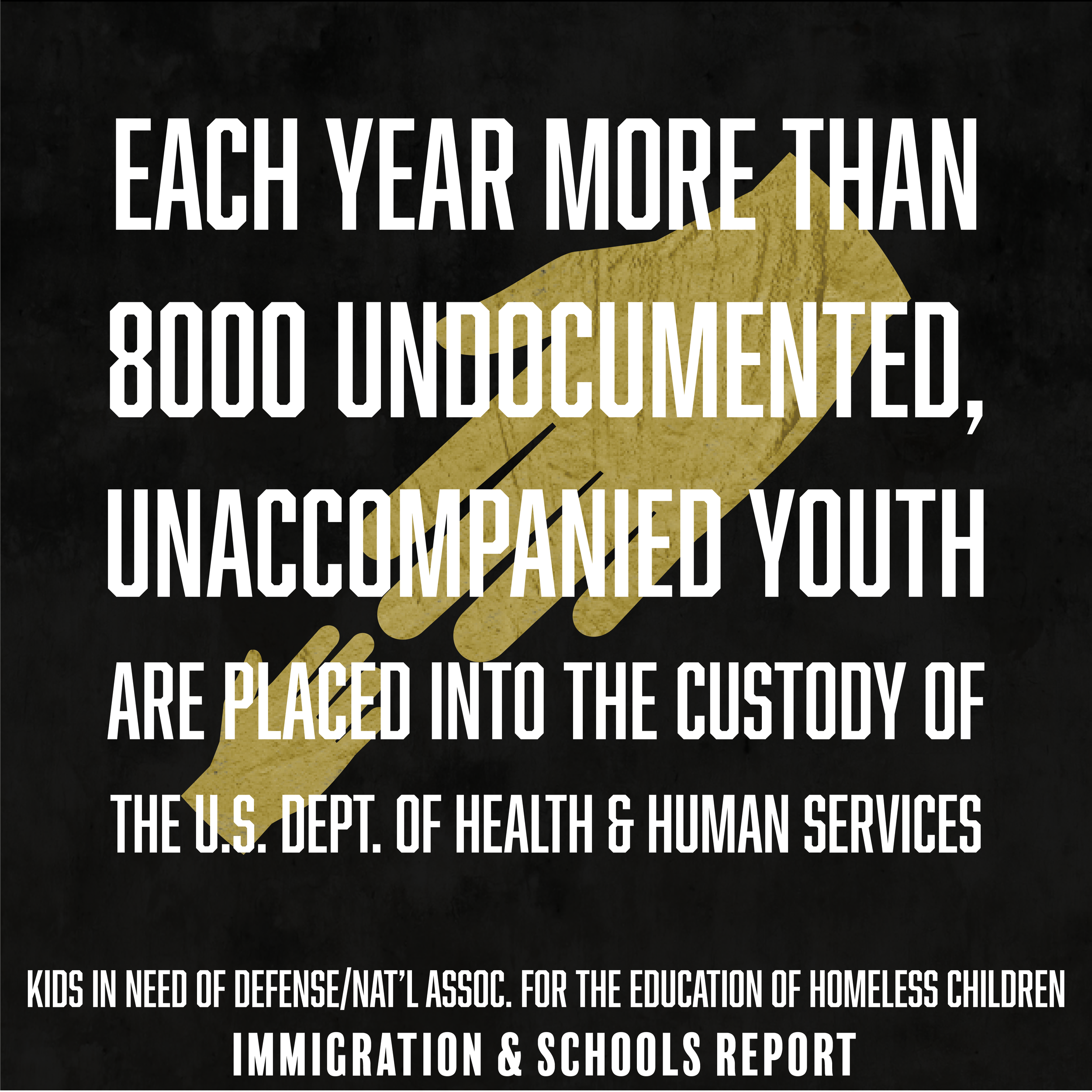 WeThe504 Stats_Undocumented Youth2.png