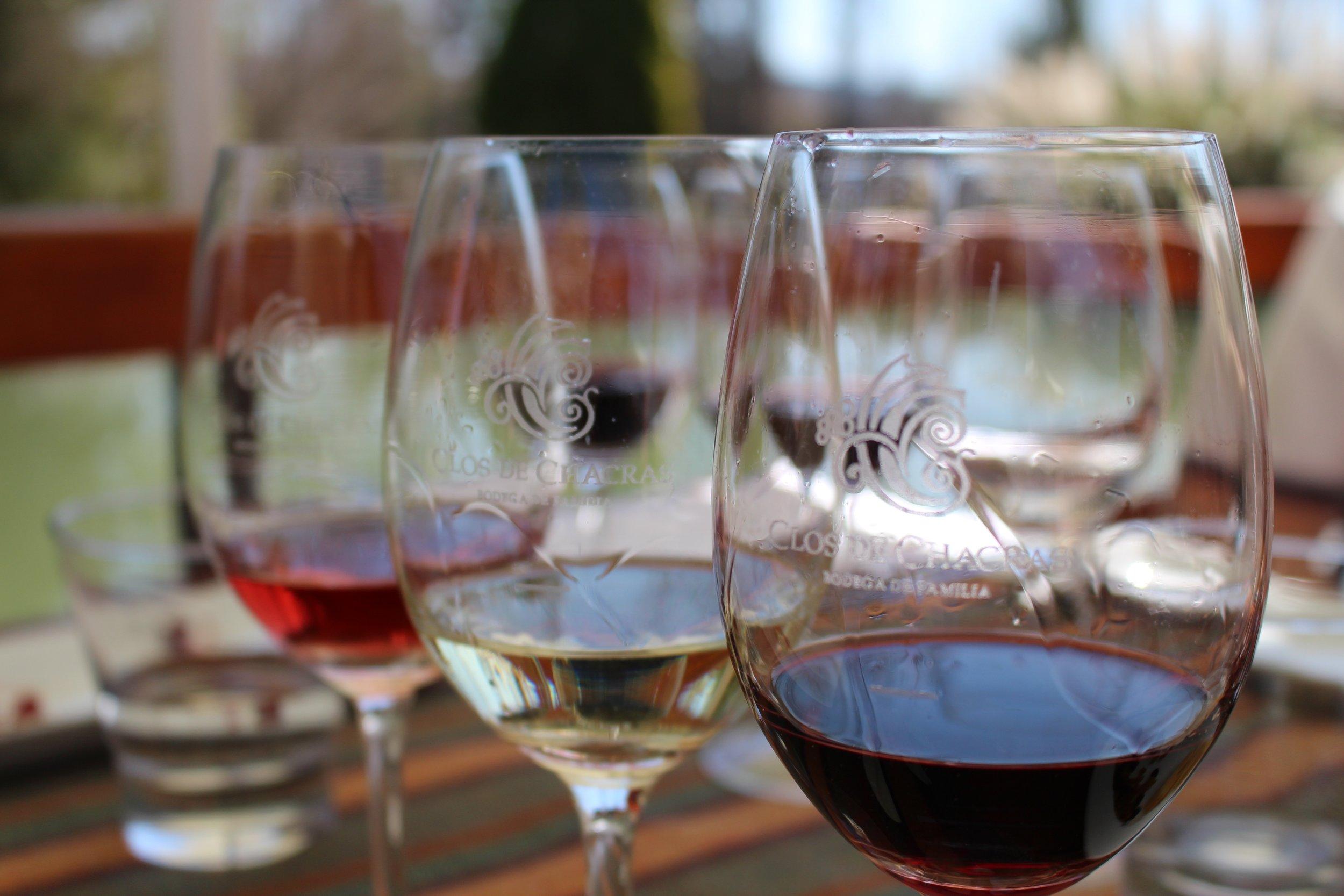 Rose, White and Red at Clos de Chacras Vineyard, Mendoza