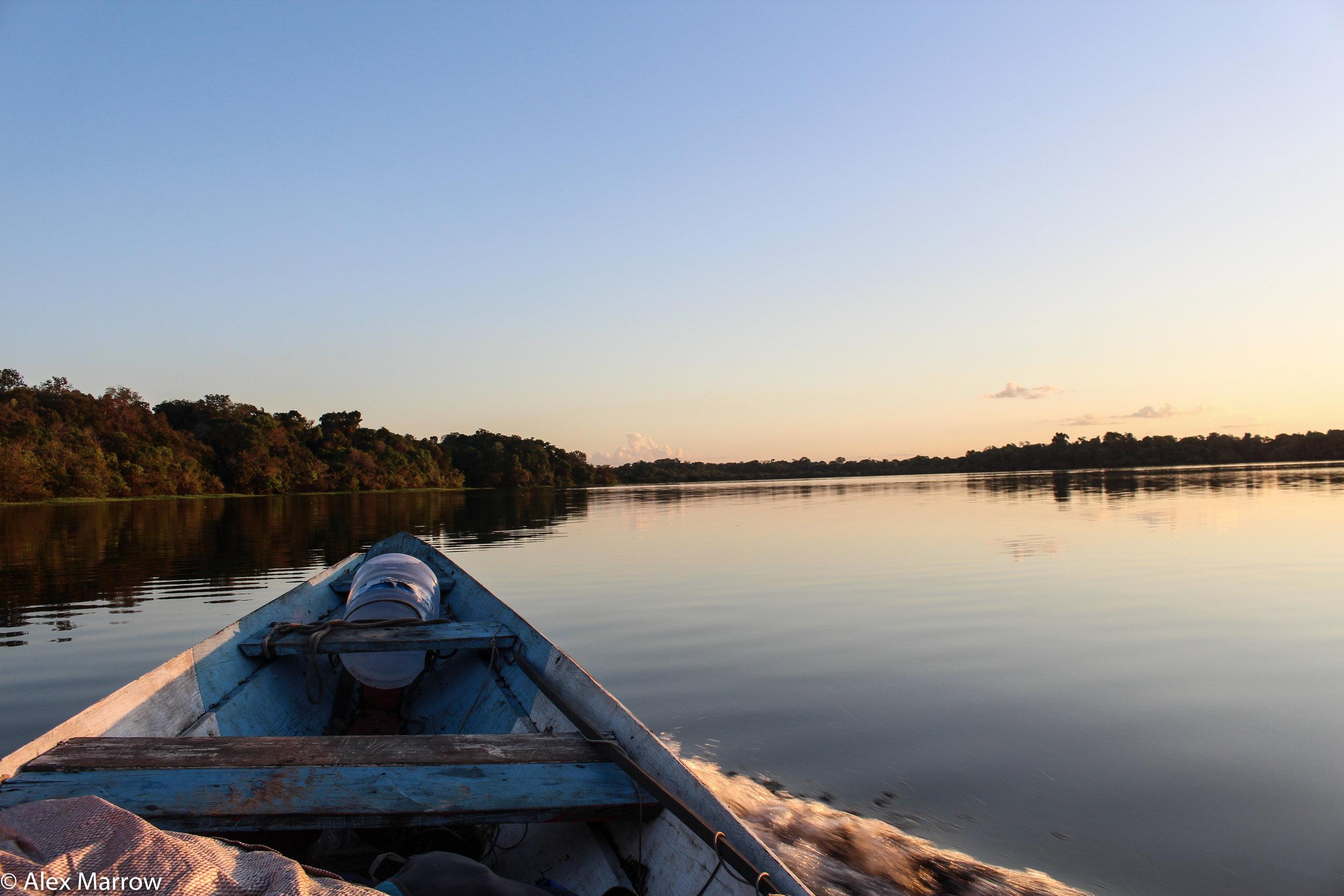 Juma Reserve, Manaus