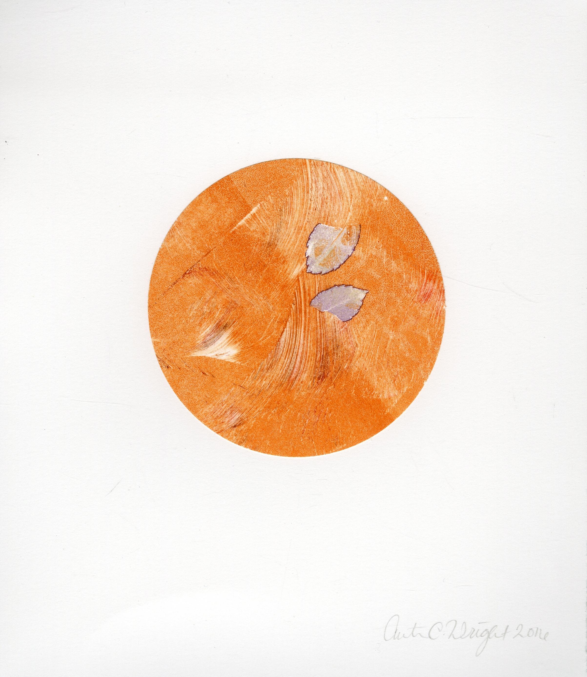 circleS017.jpg