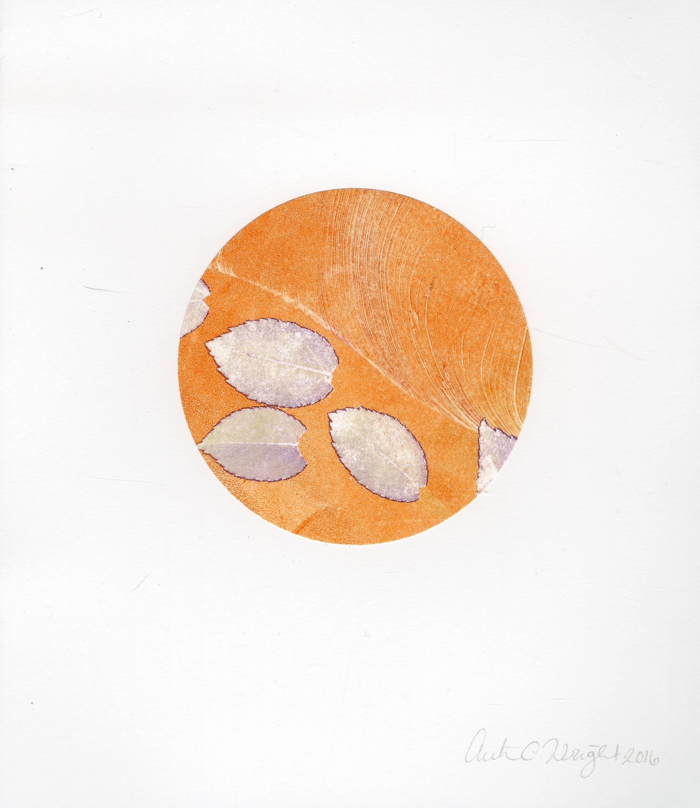 circleS018.jpg