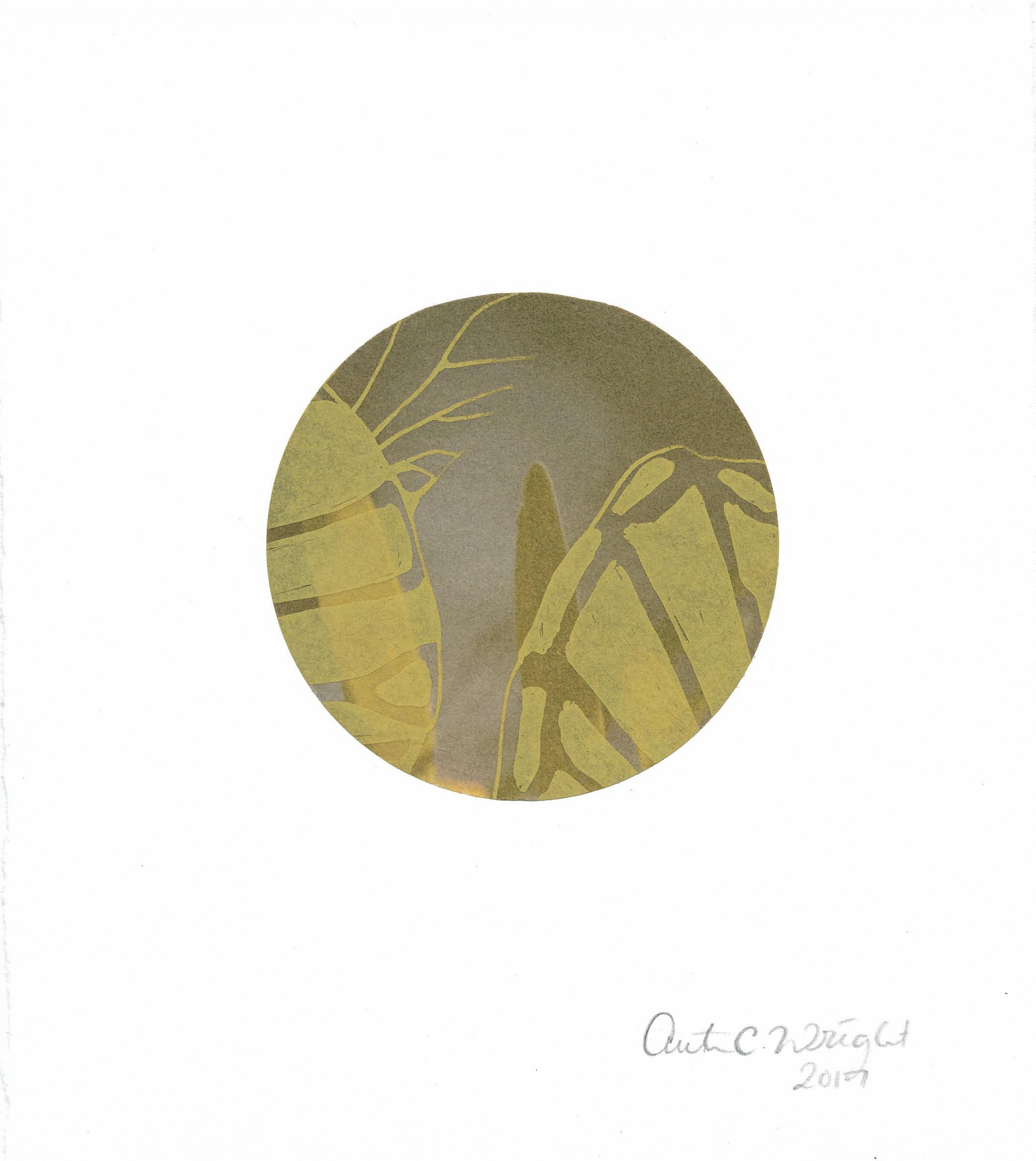 CircleS141.jpg