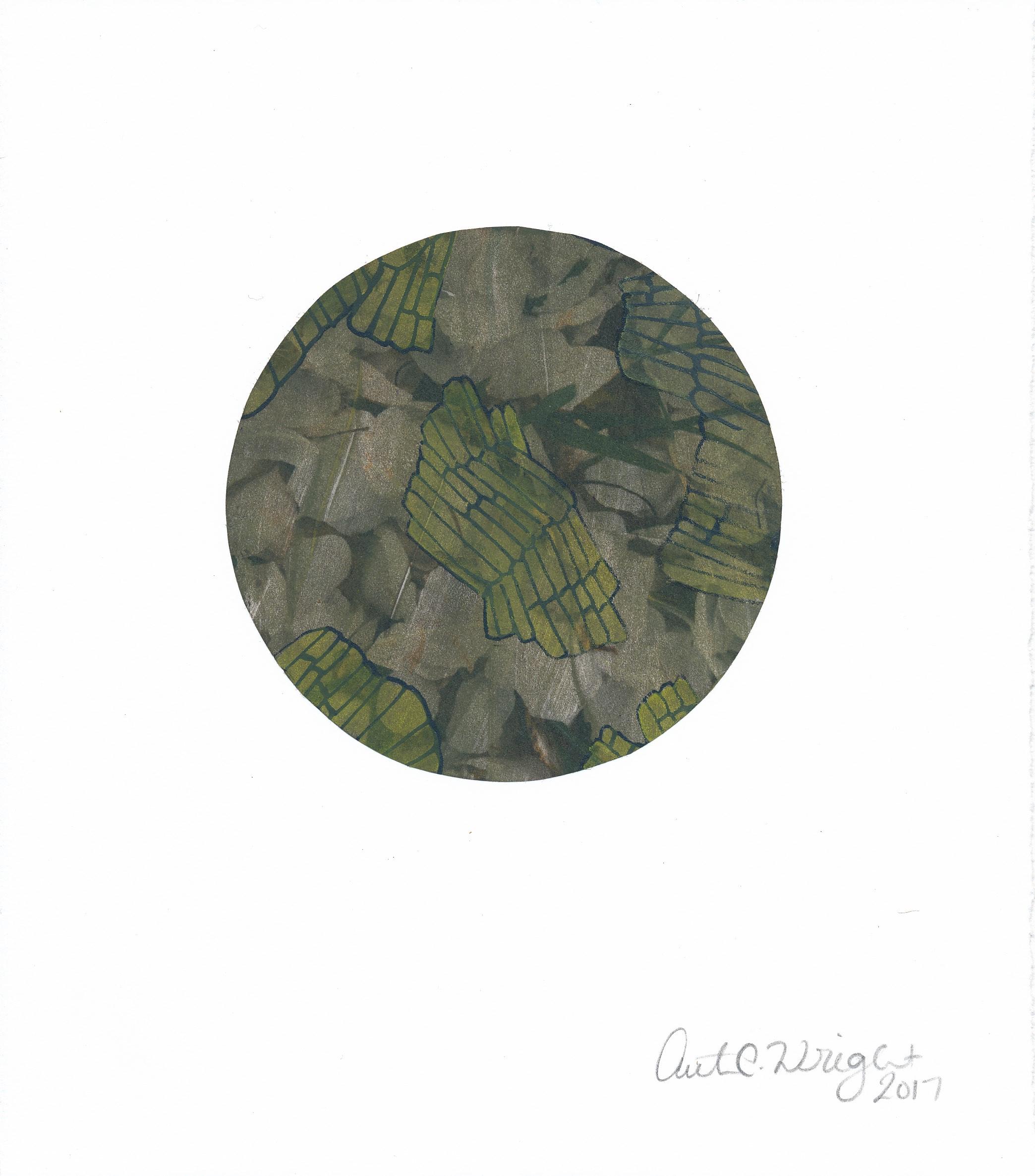 CircleS151.jpg