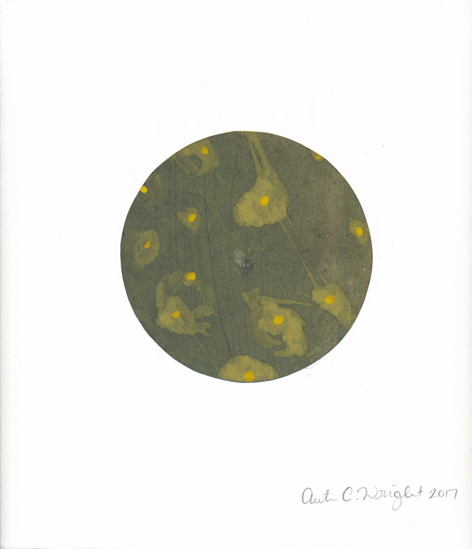 CircleS161.jpg