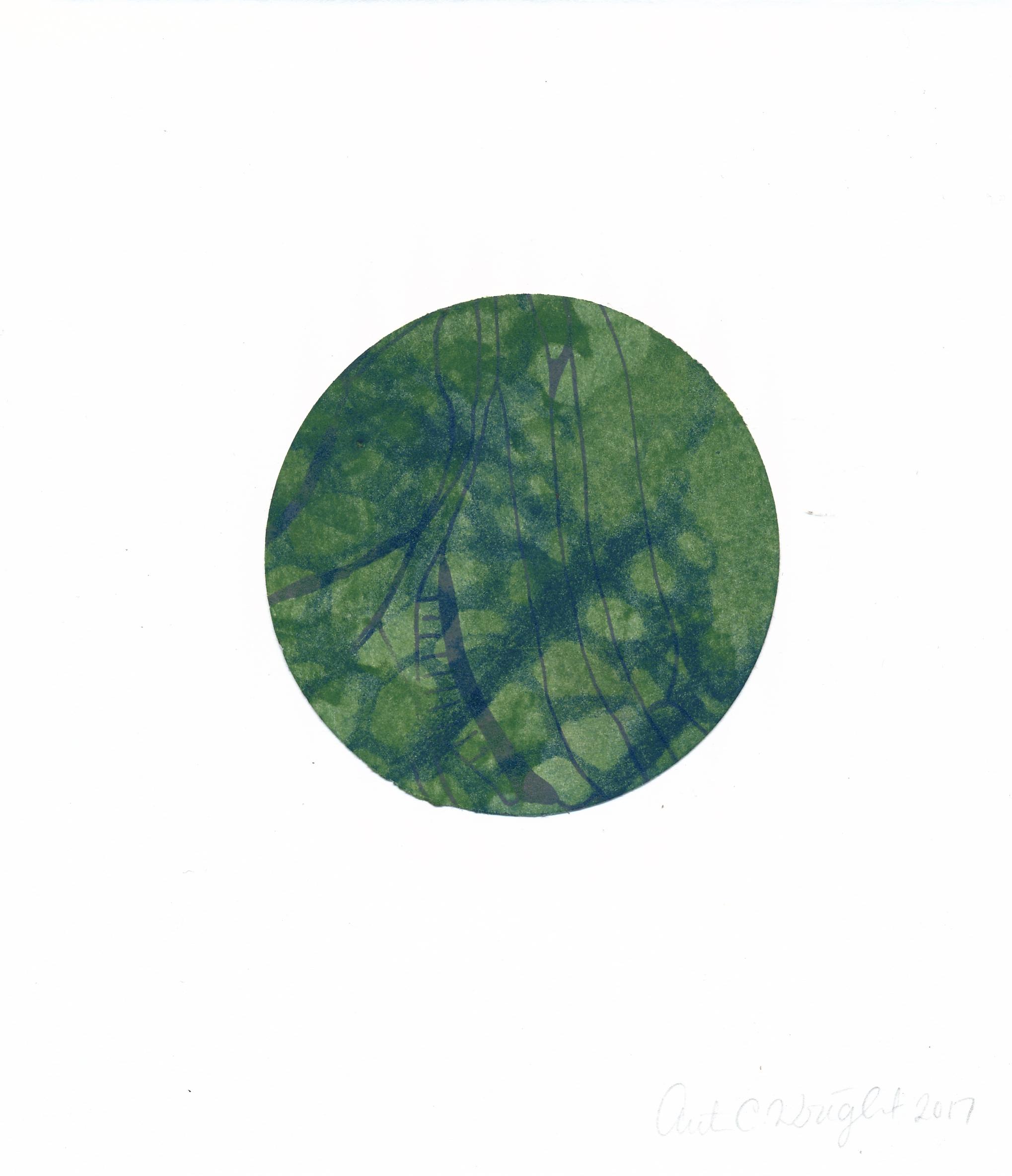 circle223.jpg