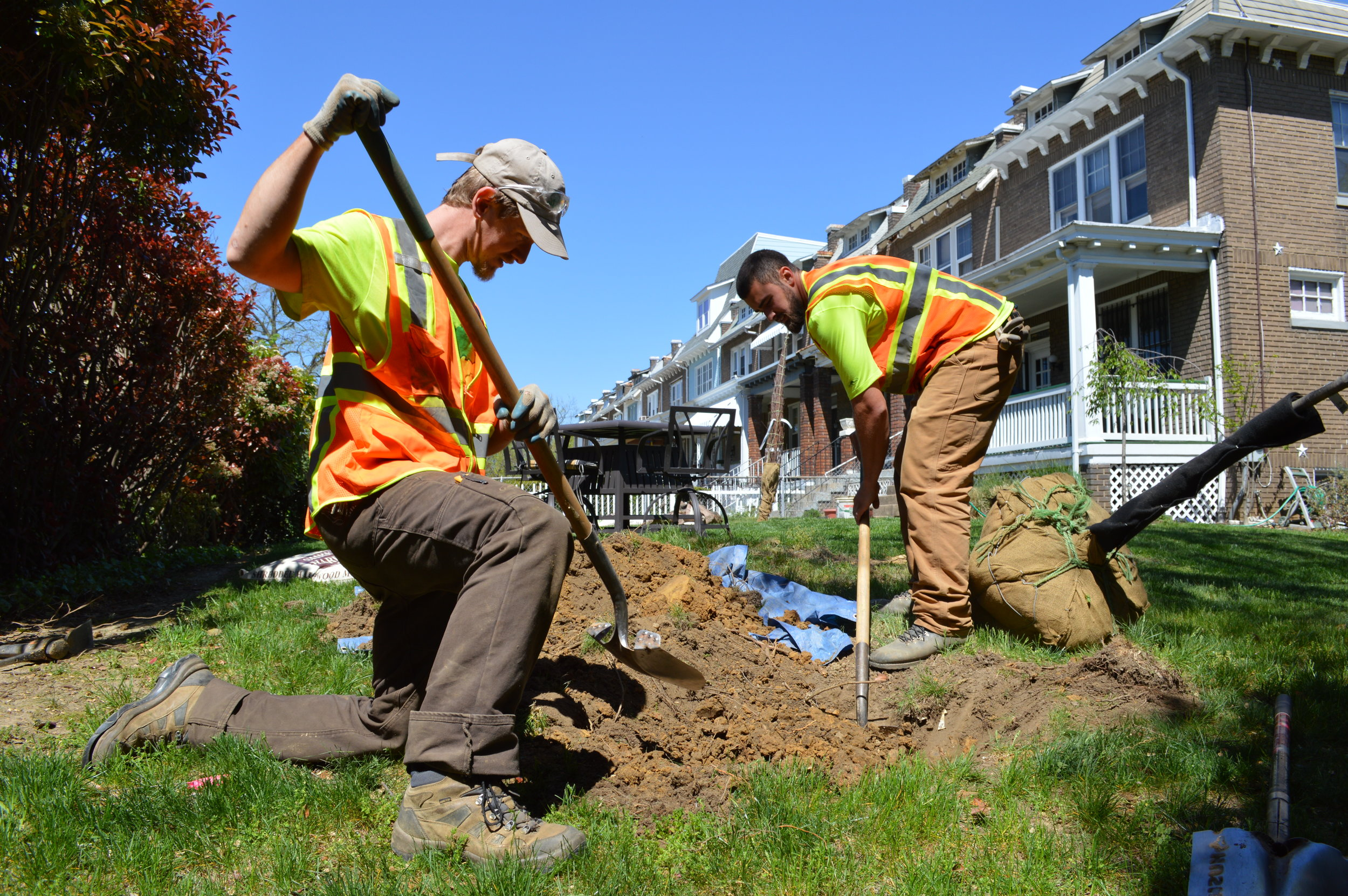 Get a Tree - Sign up for a free stormwater audit
