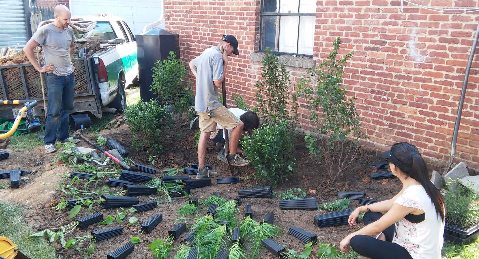 Get a Rain Garden - Sign up for a free stormwater audit