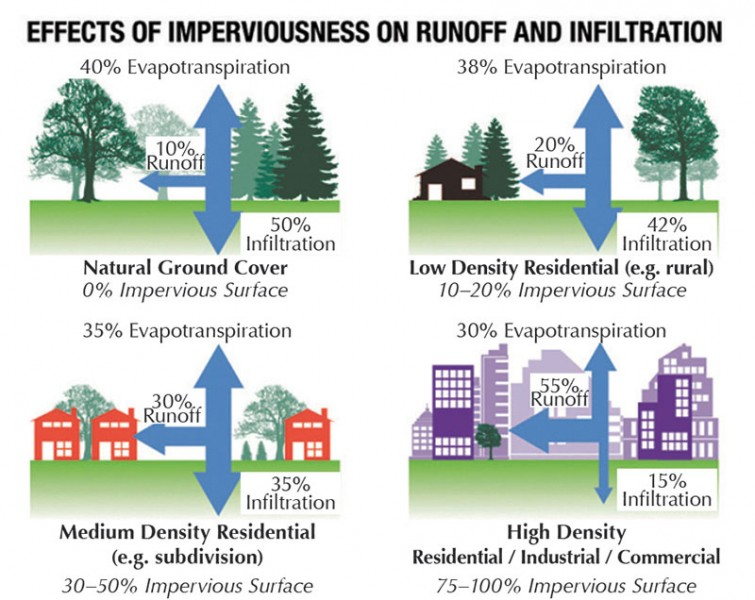 Stormwater has better chances to infiltrate into the ground naturally when there is more vegetation and less impervious surface. Impervious surface removal helps homeowners reduce unnecessary impervious area and convert to more green space. (Source: City of Griffin, GA, Municipal Government)