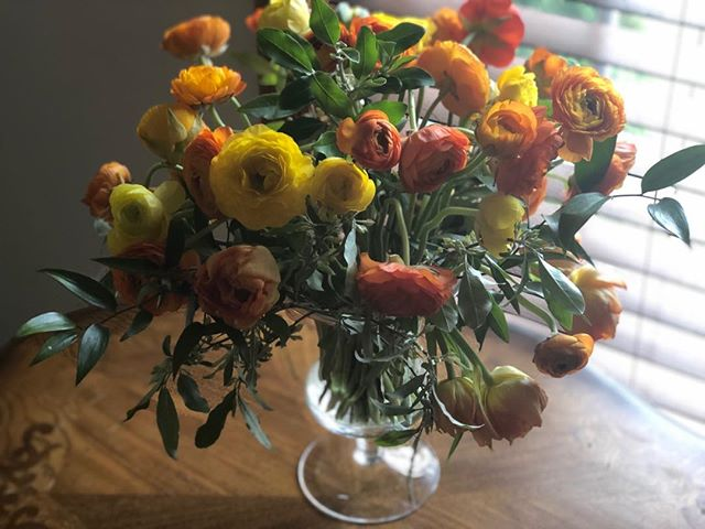 Still taking orders for Mother's Day! Here we have beautiful ranunculus and double peony tulips—all California grown, and the Russian Olive was cut right in my backyard. Mom will feel so special receiving her fragrant and lovely arrangement. #ranunculus #doubletulip #bouquet #seasonalflowers