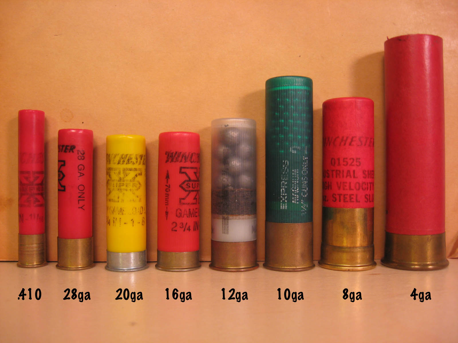 shotgun-shells.jpg