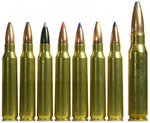 223_Remington-300x245.jpg